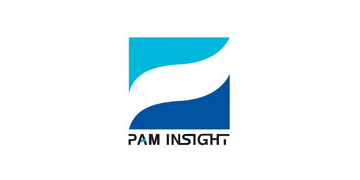PAM Insight Ltd logo